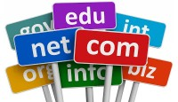Domain Nedir? Domain Nasıl Sorgulanır?