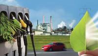 Bioenerji Nedir?